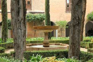 Daraxa's Garden
